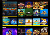 The Casino provides a huge virety of games