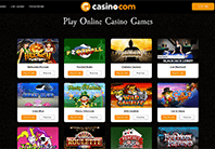 The Casino provides a big virety of games